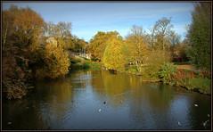 River Avon (Welsh Harlequin) Tags: picnik chippenham riveravon rnbbristolavon