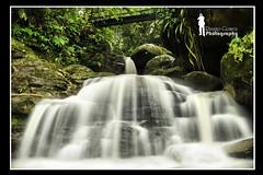 The Power of Nature (Ringgo Gomez) Tags: topseven anawesomeshot malaysianphotographers nikon2470mm nikond700 batterthangood sarawakborneo flickrawardgallery