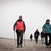 Nordic Walking Porto Corsini