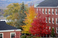 Colorbar (Cna1_10) Tags: red color building tree fall river autum