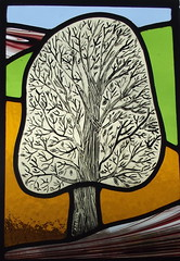 "beech tree front door stained glass panel • <a style=""font-size:0.8em;"" href=""http://www.flickr.com/photos/46452793@N03/8211179613/"" target=""_blank"">View on Flickr</a>"
