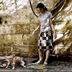 Street dog 2 (skizo39) Tags: allxpressus