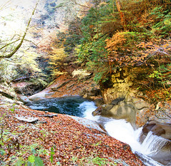 IMG_9673-IMG_9674 (youkaine) Tags: november autumn red orange mountain yellow japan forest river waterfall hiking autumncolors foliage 日本 紅葉 秋 山 yamanashi 11月 川 ハイキング 山梨 nishizawakeikoku 葉っぱ 山梨県
