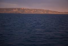 Ondas (energia buran) Tags: sea fish coral barco underwater redsea dive egypt deep diving egipto wreck reef buceo thistlegorm arrecife submarinismo pecio marrojo rasmohammed photosub abunahas sharkyolanda tiranstraight