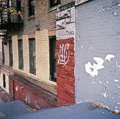 (andre dos santos) Tags: new york city nyc newyorkcity newyork 120 6x6 tlr film rollei rolleiflex zeiss square lens reflex kodak bronx twin slide east chrome squareformat medium format positive thebronx ektachrome e100vs tremont 35e planar 75mm easttremont