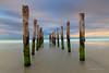 Pastel Path (ctlim76) Tags: newzealand jetty southisland dunedin stclairebeach ☆thepowerofnow☆