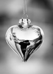 Me, myself and my heart. (CecilieSonstebyPhotography) Tags: blackandwhite bw reflection love closeup canon silver heart christmasornament selfie markiii silverheart xmasdecoration ef100mm ef100mmf28lmacroisusm