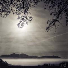 Perfect Day (cardijo) Tags: blackandwhite salzburg 120 tlr film rollei rolleiflex landscape austria sterreich rodinal landschaft ilford fp4 schwarzweis