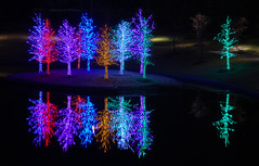 Christmas in Vitruvian Park (brian's other photo page) Tags: christmaslights addisontx vitruvianpark vitruvianlights