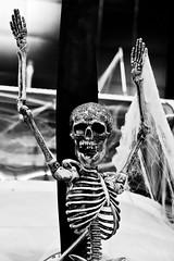 Touchdown (Lea and Luna) Tags: decorations blackandwhite bw abstract halloween monochrome virginia smithsonian nikon va nikkor decor nationalairandspacemuseum lr chantilly lightroom udvarhazycenter achromatic d5100 55300mmf45 18mm55mmf35