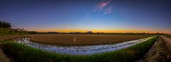 Final Day (FOTOdair) Tags: anoitecer frio massaranduba sol entardecer cores paisagem beleza sky sunset cold colors landscape wallpaper panoramica