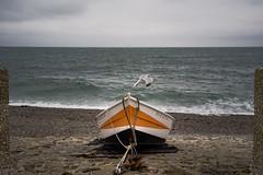 Boat and the seagull (Renato Pizzutti) Tags: mare oceano canaledellamanica etretat normandia nuvole cielo barca spiaggia nikond750 renatopizzutti