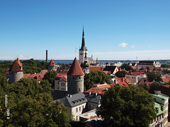 TALLIN-01 (e_velo ()) Tags: 2016 summer estiu verano estonia tallin olympus e620 travels viatges viajes