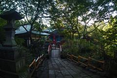SDQ_3380lr (yoshitoshi ABe) Tags: 20160904 吉祥寺 井の頭公園 sdquattro sigma15mmf28exdgdiagonalfisheye
