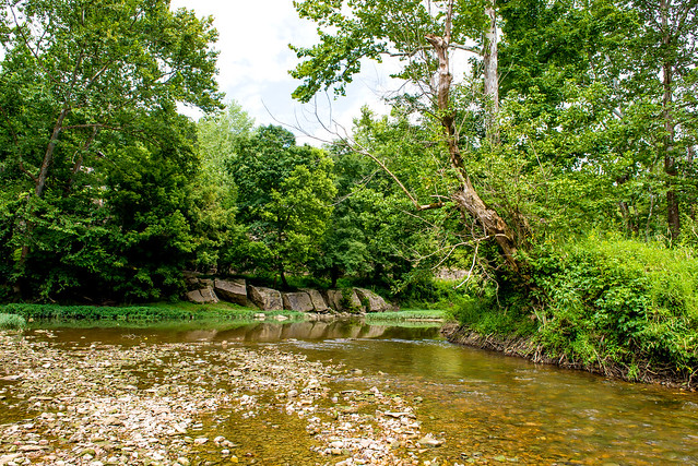 Muscatatuck River - Muscatatuck County Park - August 12, 2016