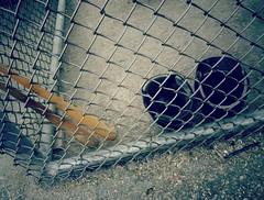 Baseball fence. (France-) Tags: 111 fence cloture baseball baton helmet metal bat