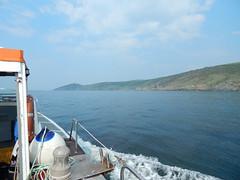 Plymouth-201605-26-RameHeadInView (Tony J Gilbert) Tags: plymouth marine macro underwater diving nikond300 handdeeps jameseaganlayne hilseapointrocks scylla ceeking wwwdivingplymouthcom