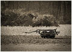 .......---oo... (Gabi Wi) Tags: landmaschine monochrome landschaft ebenen linien strukturen technik historisches ackerbau landwirtschaft abgestellt sommer schrfentiefe felder
