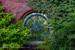 Blue wrought iron sunk in red brick arches (Sue_Todd) Tags: bla blau blauw bleu blu blue building buildings city colours england greatbritain green niebieski ornatewroughtiron redbrick redbricks sininen stockton stocktonrailwaystation tees teeside trainstation uk unitedkingdom urban wroughtiron azul greenish greens greeny groen grn grn grnn grn verdajn verde vert vihre yeil zielony
