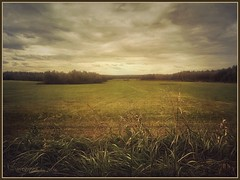 autumn mood. (odinvadim) Tags: landscape igcaptureslandscapes evening clouds iphoneart iphoneography iphoneonly autumn graphic mytravelgram painterlymobileart sunset enteredinsyb iphone country snapseed old forest instapickskyart textured textures painterly