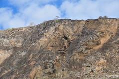 Buccaneer Cove (Ryan Hadley) Tags: rockface cliff landscape nature monserrat buccaneercove santiagoisland islasantiago galapagos galapagosislands galpagos galpagosislands ecuador southamerica pacificocean nationalpark worldheritagesite