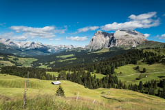 20160822_115 Alpe di Siusi (southernman61) Tags: d750 dolomiti altoadige italy siusi sassolungo