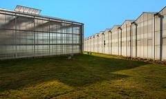 BPK II (jefvandenhoute) Tags: belgium belgi belgique duffel green greenhouse light lines shapes nikond800 photoshopcs6