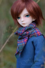 ADAW (26/52) - Between summer and autumn (*Feylla*) Tags: dollzone jake bjd ball jointed doll