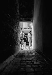 Rue Haute (Eero Capita) Tags: noir blanc black white bw nb ruelle street rue haute hoogstraat brussels bruxelles nikon d5100 1020 sigma