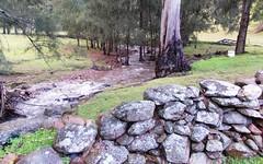 567 Riverlea Road, Mudgee NSW