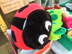 Big Bug (My photos live here) Tags: lady bird ladybird bug insect toy cuddly charity shop for sale caledonian road camden london capital city england i phone 5s