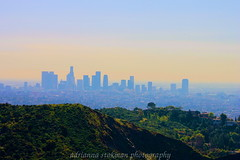 Los Angeles (adriannas13) Tags: california park ca trees light summer sky sun color building tree cars love grass leaves cali skyline clouds canon buildings fun photography losangeles colorful soft pretty day dream lookout dreaming busy socal hollywood colourful inspirational focused inspiring edit phixr