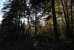 Parque natural, Rakov Skocja (8) (@5destinosBLOG) Tags: eslovenia 2012 d3000