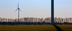 052 - Technology and Nature (- soma -) Tags: blue trees winter sky brown tree 20d field canon landscape eos hungary wind panoramic clear turbines