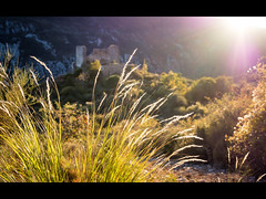 Grass in the sun (jeff_006) Tags: light sunset sun france castle grass landscape path country ruin panasonic flare f28 omd 1235 olypus em5 flickrsfinestimages1