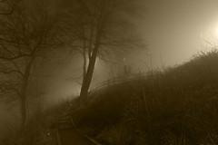 Fog (Tomasz J) Tags: bridge fog night river sweden most noc mgła falkenberg rzeka szwecja ätran