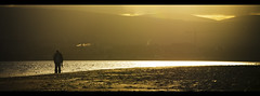 Dublin shore Explored #455 (Wendy:) Tags: dublin monochrome seashore dublinbay 70200mmf4l explored shellybanks