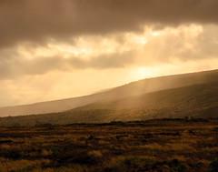 slope (andymudrak) Tags: bigisland