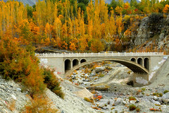 Bridge Of Colours (Amir Mukhtar Mughal | www.amirmukhtar.com) Tags: pictures bridge autumn trees pakistan light red orange plants plant tree fall nature colors beautiful beauty grass leaves yellow stone architecture canon landscape golden leaf colours image photos stones branches north scenic images autumnleaves autumncolours architect amir kkh pakistani nwfp extraordinary northernpakistan mughal mughals northofpakistan baltistan pakistanphotos pakistanimages imagesofpakistan pakistaniphotographers pakistaniphotographer northernareasofpakistan amirphotography pakistaniphotography picturesofpakistan pakistanpictures northernareaofpakistan photosofpakistan pakistaniphotos autumnphotography gilgitbaltistan amirmukhtar pakistaniimage autumninpakistan pakistanipictures photographersofpakistan wwwamirmukhtarcom photographyofpakistan pakistaniimages amp005221