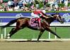Tapizar & Jockey Corey Nakatani (I'm Smokin) Tags: portrait horse racetrack 8 jockey horseracing racehorse thoroughbred horserace santaanita breederscup coreynakatani tapizar breederscup2012