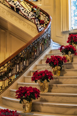 Poinsettias On The Marble Stairway (Barry McBeth) Tags: christmas green leaves oregon 35mm portland gold nikon foil f14 or 14 poinsettia rail stairway mansion marble d200 railing nikkor bannister pittock nikkorn diamondclassphotographer flickrdiamond