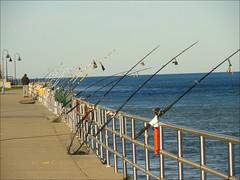 Gone Fishin' (joeldinda) Tags: bells fishing michigan rail cybershot sidewalk breakwater fishingpoles stclairriver porthuron joeldinda
