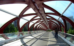 Calgary's Peace Bridge (altamons) Tags: city bridge urban canada calgary interestingness interesting cityscape cities scout explore alberta bowriver scouted explored altamons