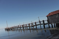 The Pier at China Camp (skipmoore) Tags: pier fishing village chinese marincounty sanrafael chinacamp