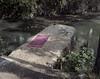 (Andrés Medina) Tags: film project river spain 6x7 elrio andresmedina