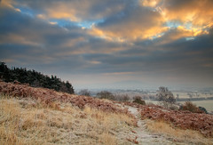 Winter Frost (Natasha Bridges) Tags: morning trees winter mist sunrise dawn countryside frost shropshire fields wrekin