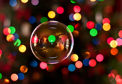 Mr. Bubbles and his colorful friends (Proleshi) Tags: christmas reflection colors 50mm lights navidad nikon colorful bokeh colores christmaslights bubble burbuja multicolor josephs jamal pompadejabn 50mm14afs proleshi