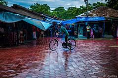 Rain and Cycling (ujjal dey) Tags: ujjal ujjaldey sudden rain shilparamam hyderabad cycling evening wet shopping monsoon