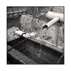 the source  kyoto, kansai  2015 (lem's) Tags: water japan rolleiflex kyoto eau kansai japon source planar