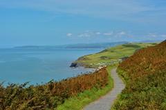 DSC_0549 (stephanie.burgess97) Tags: consitution hill aberystwyth ceredigion wales uk seascape landscape footpath blue sky cloud cardigan bay clarach bracken hills cliffs summer